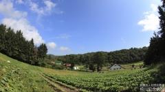 farm_022
