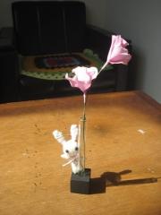 one-flower-2